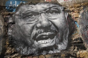 The Egyptian Revolution: The Background Story