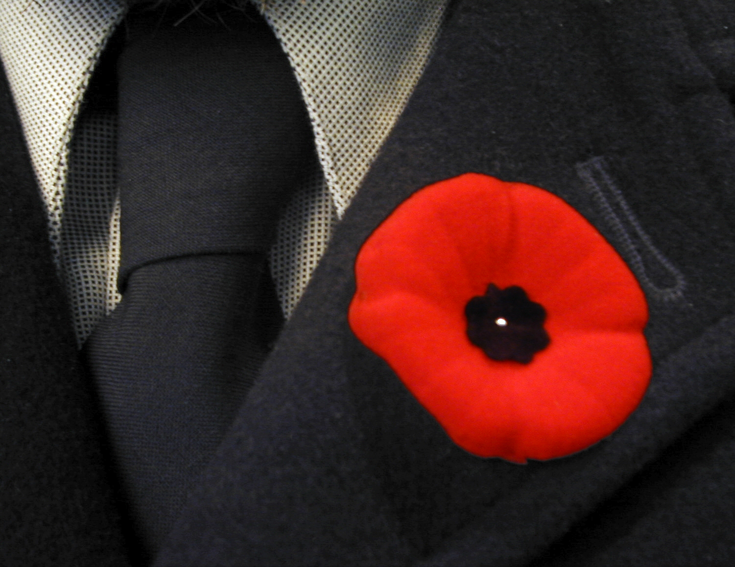 Remembering Not Repeating Why We Should Wear The Poppy Shout Out Uk