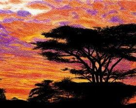 Kenya_by_Stievwaxx