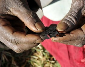Traditional surgeon holds razor blades before carrying out female genital mutilation on teenage girls in Bukwa district