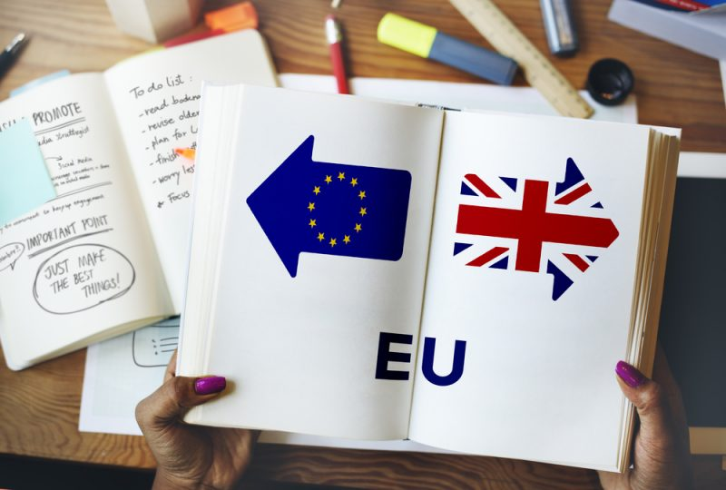 Image result for brexit students
